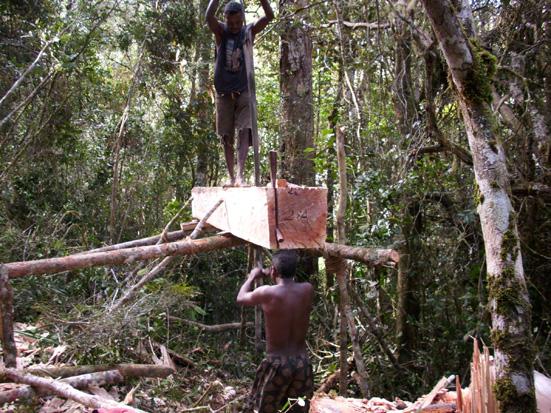 Ritualisation d'un transfert de gestion avec valorisation à Didy, Alaotra Mangoro
