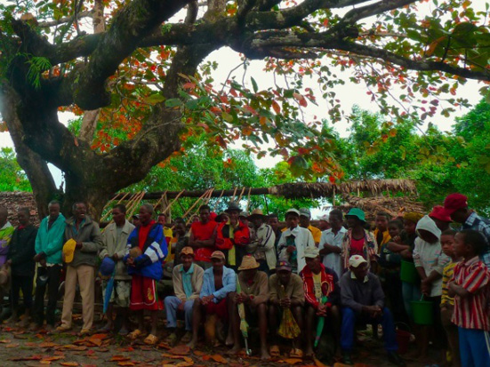 Ceremony of cult of the dead in the Analamaintsina forest, under a Terminalia cattapa (photo: Jeanne Lavialle); Madagascar Conservation & Development