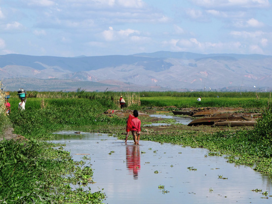 Alaotra wetlands, Madagascar (photo: Pina Lammers); Madagascar Conservation & Development