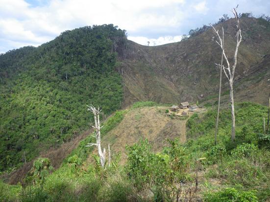 Slash and burn agriculture, a historical part of the Ampasindava Peninsula landscape