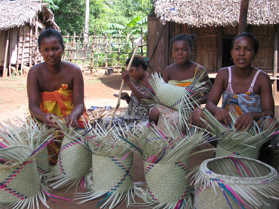 Basket weaving with satrana (Hyphaene coriacea) leaves in Northern Madagascar
