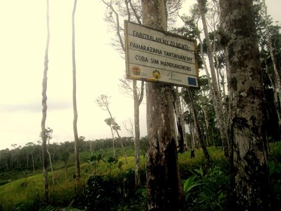 Forest fragmentation and livelihood systems, Manompana forest corridor, Madagascar