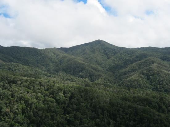 Over the high mountains of Beamalona in the corridor between Marojejy, Anjanaharibe-Sud and Tsaratanana protected areas (COMATSA)