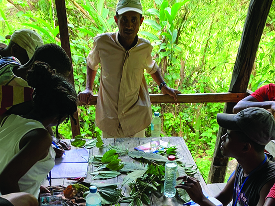 Students learn about the plants of Marojejy National Park during an educational trip to the forest